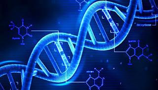 kanser tedavisinde nanorobot teknolojisi, çinli bilim adamları,