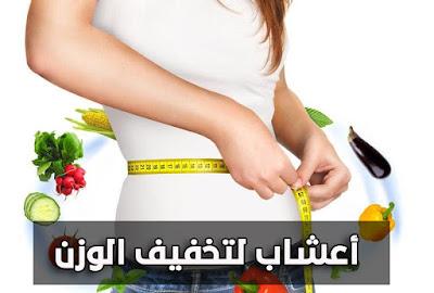 أعشاب لتخفيف الوزن بدون رجيم