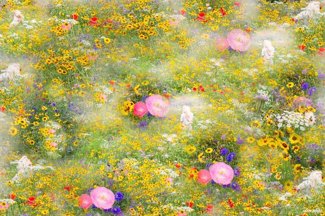 alice saga wildflower garden