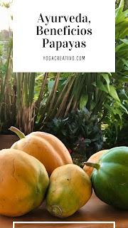 ayurveda-beneficios-salud-papaya-nutricion-cosecha-casa-ceiba-puerto-rico-aeroyoga-yoga-institute-adelgazar-wellness-bienestar-papaina