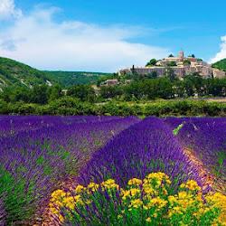 Путешествие по Провансу: история, кухня и достопримечательности