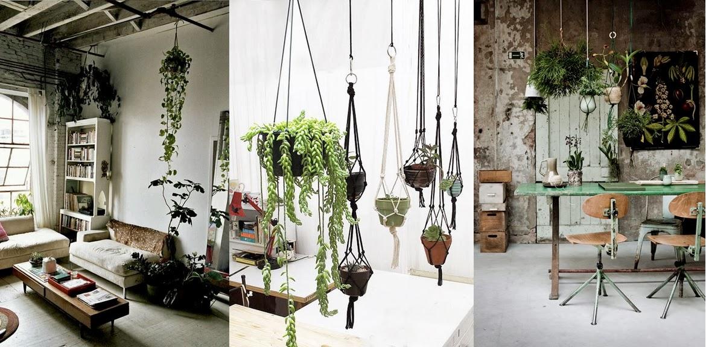 Hanging Plants Indoors Hoop Fixed Diy Planter With
