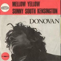 Sunny South Kensington (Donovan)