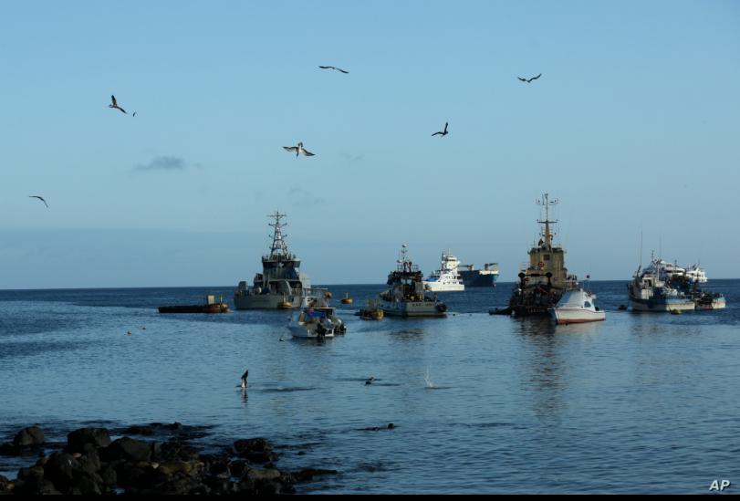 En esta foto del 2 de mayo de 2020, las aves vuelan sobre barcos de pesca y turísticos anclados en la bahía de San Cristóbal, Islas Galápagos, Ecuador / AP