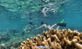 pesona wisata pulau tidung