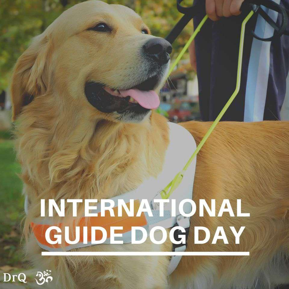 International Guide Dog Day Wishes pics free download