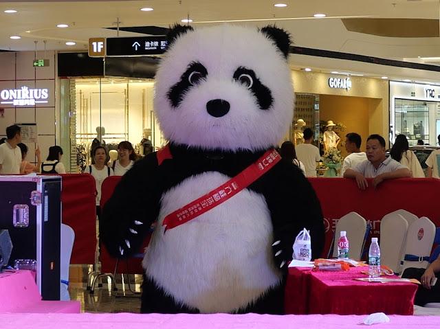 panda thinking nothing but murder