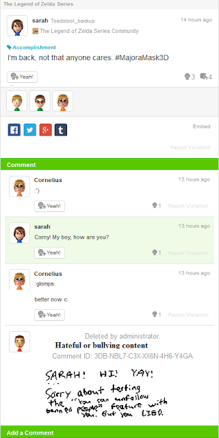 Miiverse violation calling someone a liar hateful bullying content