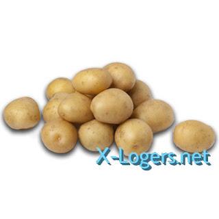 Baby Potato Kentang Rendang (Harga Per 100gr)