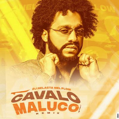 DJ Nelasta Nel Flow – Cavalo Maluco (Remix)