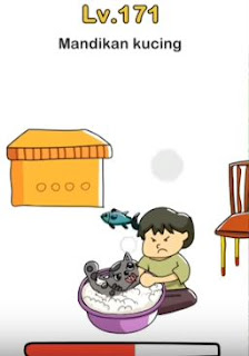 Mandikan Kucing Brain Out