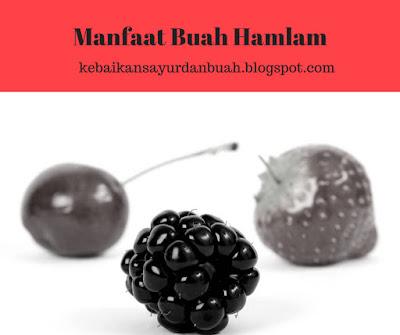 buah hamlam dan beberapa buah lainnya