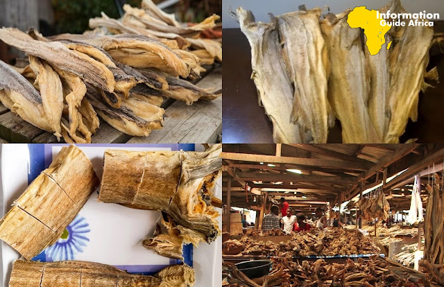 How To Start Stockfish Business In Nigeria