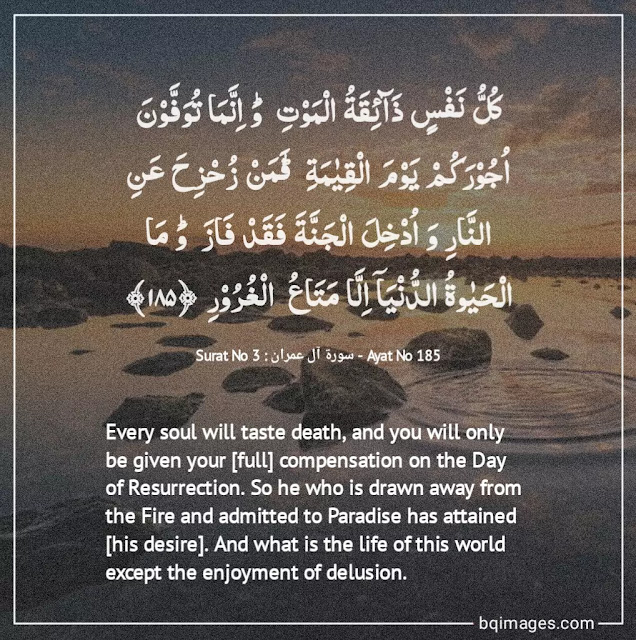 life quotes from quran