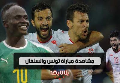 مشاهدة مباراة تونس والسنغال اليوم بث مباشر فى نصف نهائى كأس امم افريقيا