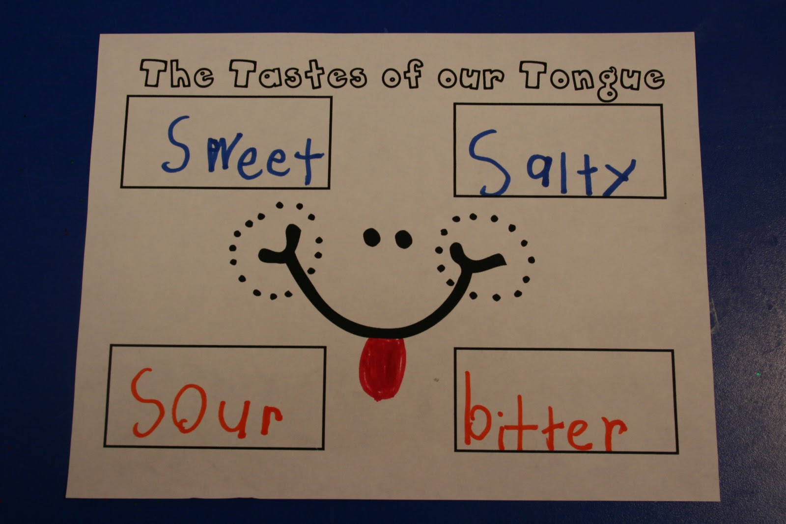 Mrs Lee S Kindergarten Gingerbread Week Amp Our Five Senses