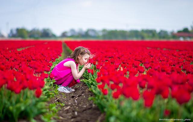 wielbicielka tulipanów