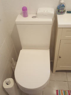 The Toilet in the New Bathroom