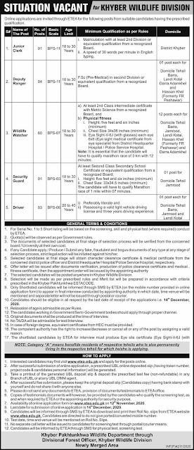 ETEA Jobs 2020 Application Form Download - www.etea.edu.pk