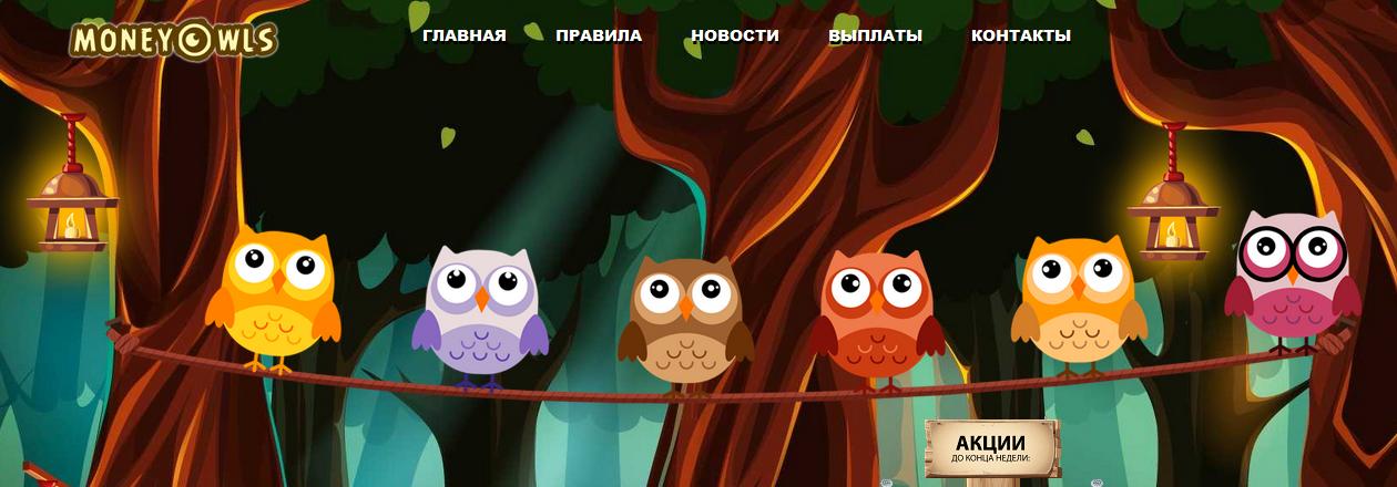Мошеннический сайт money-owls.org – Отзывы, развод, платит или лохотрон? Информация