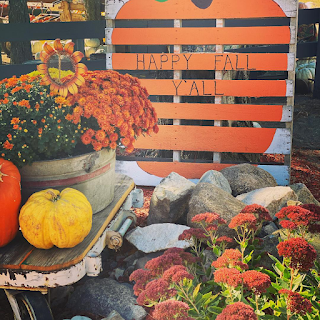 mums and pumpkins sit in front of a Happy Fall sign at Poppy's Pumpkin Patch in Norfolk, Nebraska
