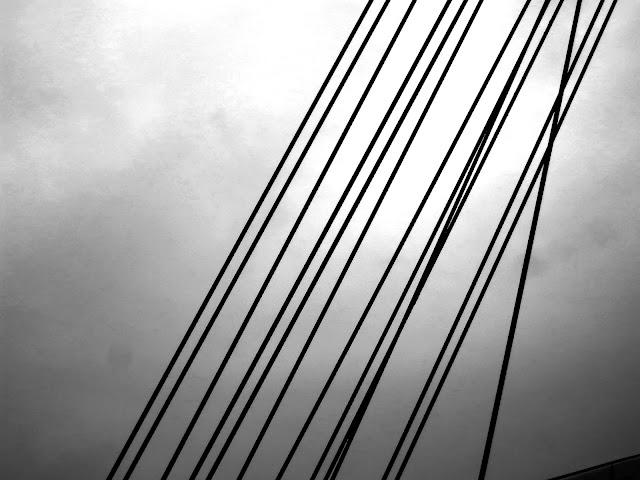 Metal cables in black and white