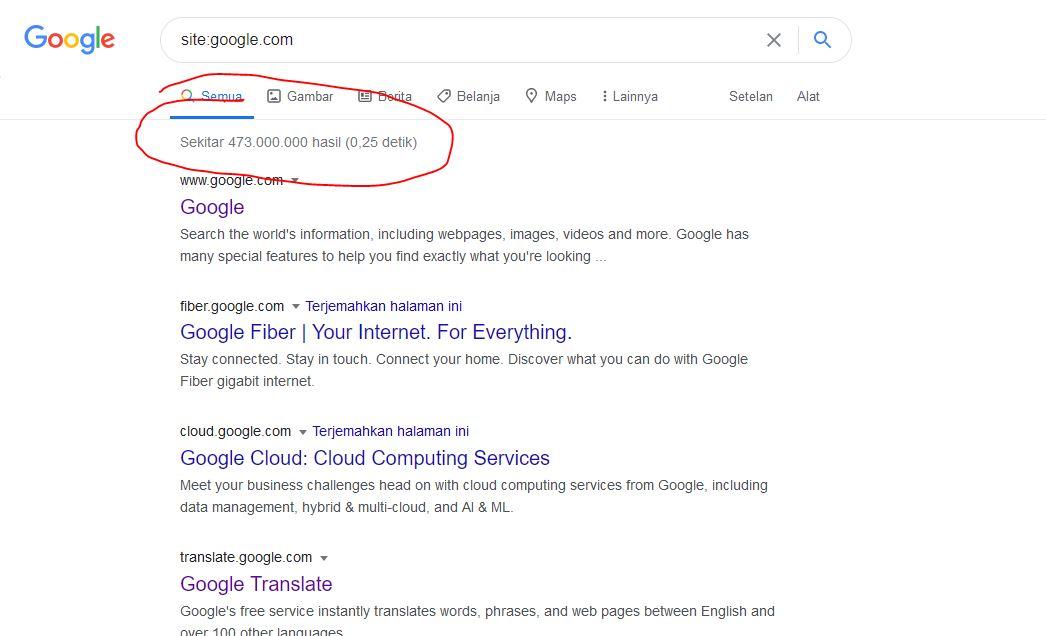 jumlah postingan google yang diindex
