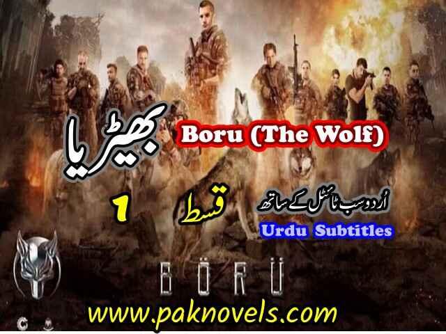 Turkish Drama Boru (The Wolf) Episode 1 Urdu Subtitles