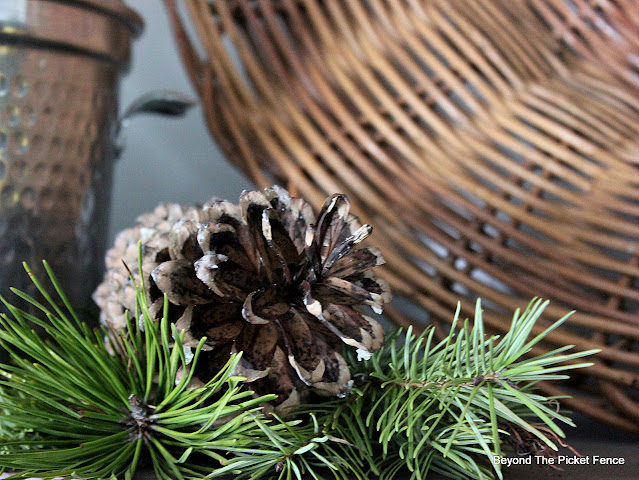 Natural Pinecones and Pine