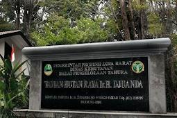 4 Objek Wisata di Hutan Raya Djuanda Bandung