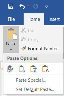 past options in word 2019