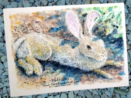 Scrappy Desert Rabbit