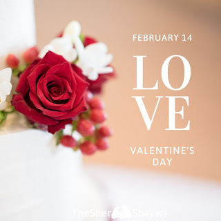image phot of valentine day special