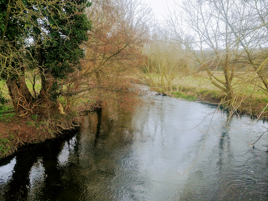 The River Colne looking N from the first footbridge mentioned in point 7 below