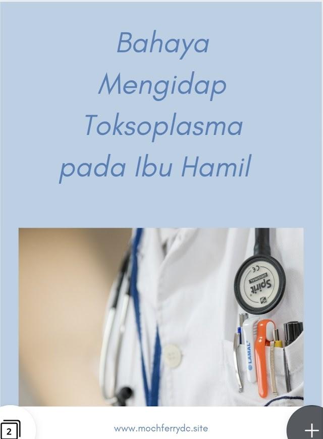 Bahaya Mengidap Toksoplasma pada Ibu Hamil