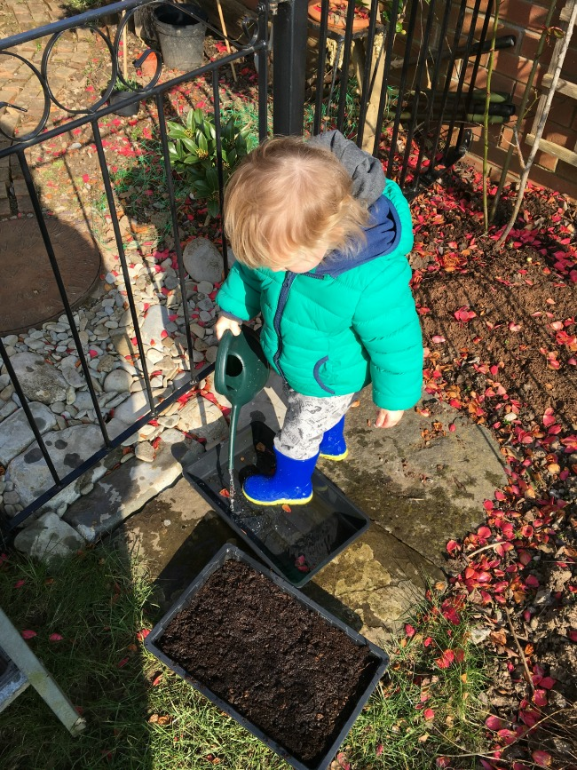 toddler pouring water from watering can