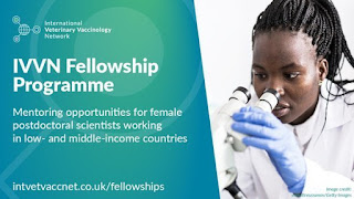 IVVN Mentoring Fellowship Programme 2020 | Female Researchers