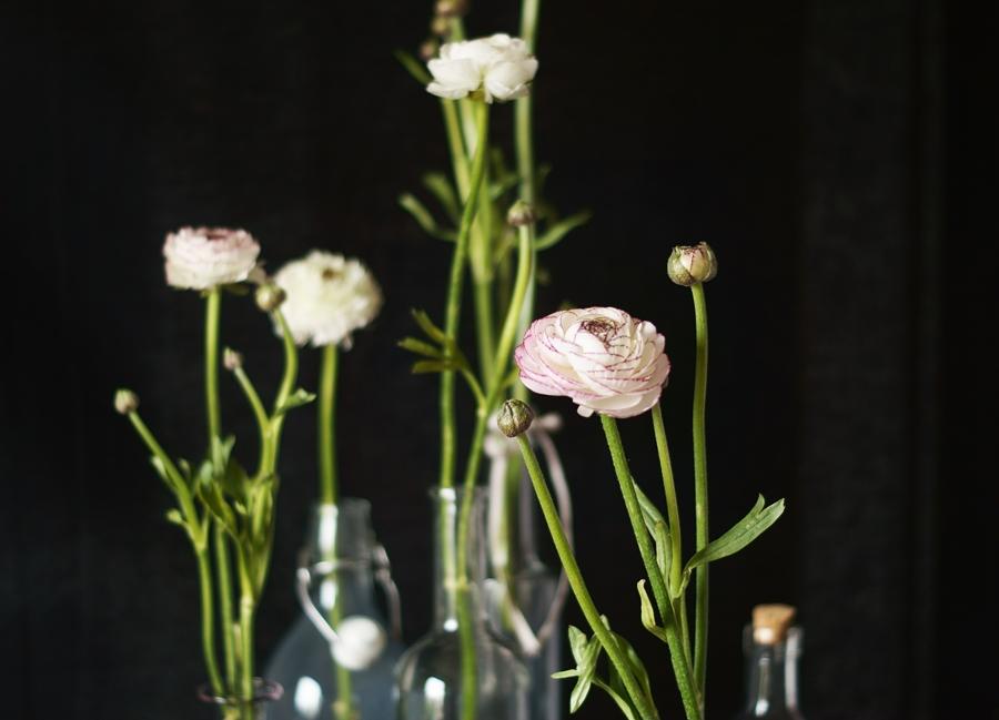 Blog + Fotografie by it's me fim.works - Ranunkeln in verschiedenen Flaschen