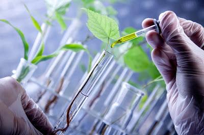 Manfaat Bioteknologi Dalam Berbagai Bidang