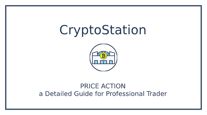 PRICE ACTION: a Detailed Guide for Professional Trader