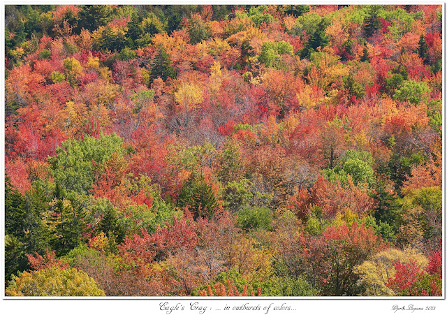 Eagles's Crag: ... in outbursts of colors...