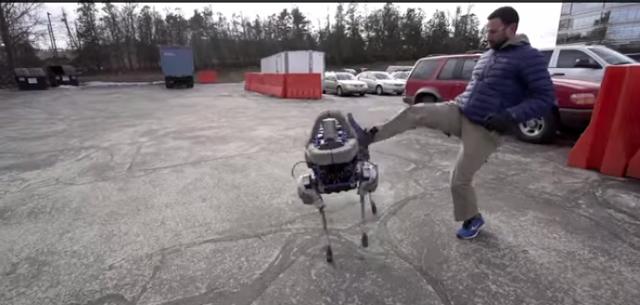 patada a perro robotico