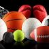 Các môn thể thao trong tiếng Hàn 스포츠