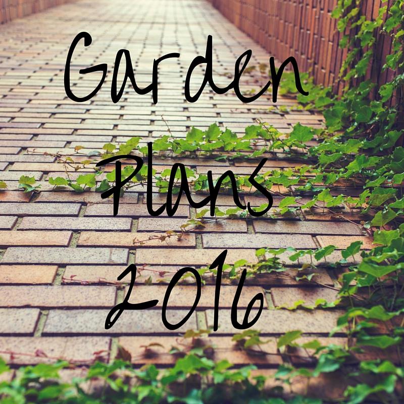 Garden Plans 2016..