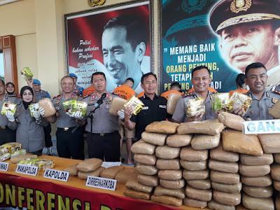 Gelar Ekspos Kasus Narkoba, Kapolda Lampung Ungkap Distribusi 295 Kg Ganja Lintas Provinsi