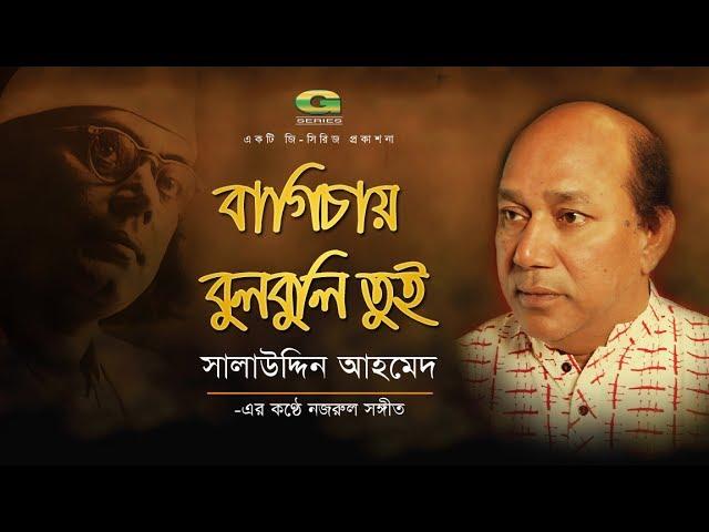 Bagichay Bulbuli Tui Lyrics ( বাগিচায় বুলবুলি তুই ) - Nazrul Geeti
