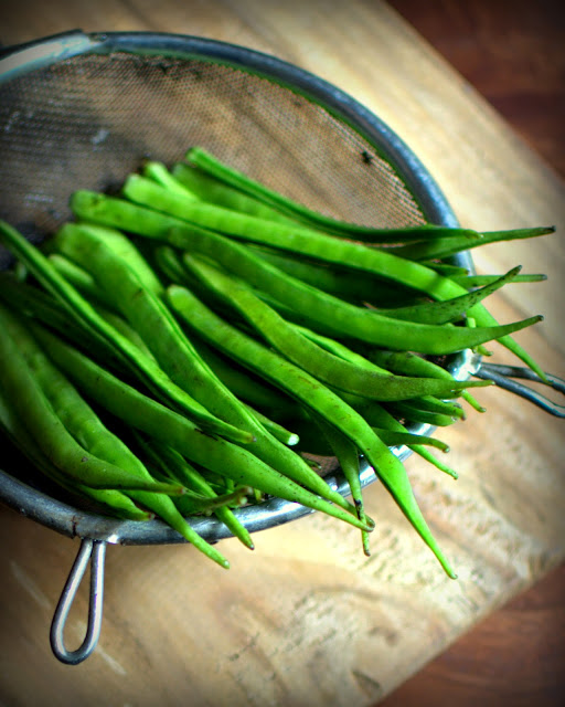 guar or cluster beans