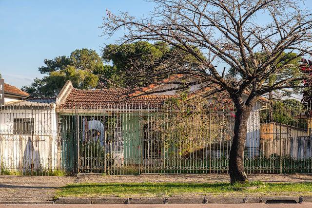 Árvore na calçada em frente de uma casa