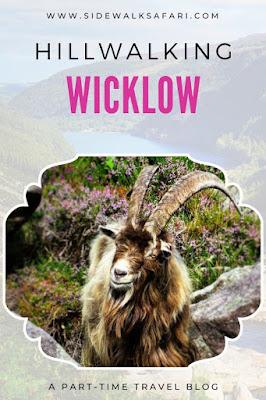 Go Hillwalking in Wicklow Ireland