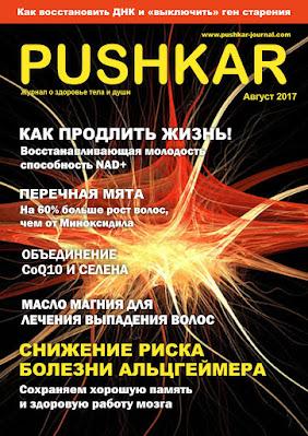 ЖУРНАЛ PUSHKAR №1 АВГУСТ 2017